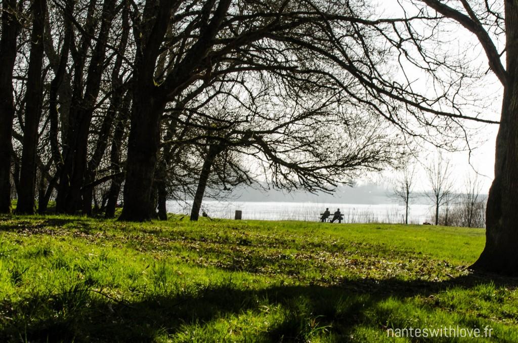 Ile Clémentine Saint Luce sur Loire