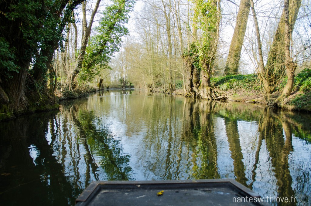 Barque - Marais Poitevin