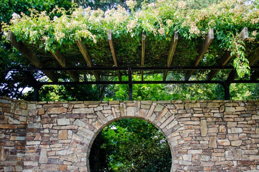 A la découverte de la Roseraie de Nantes – Parc floral de la Beaujoire
