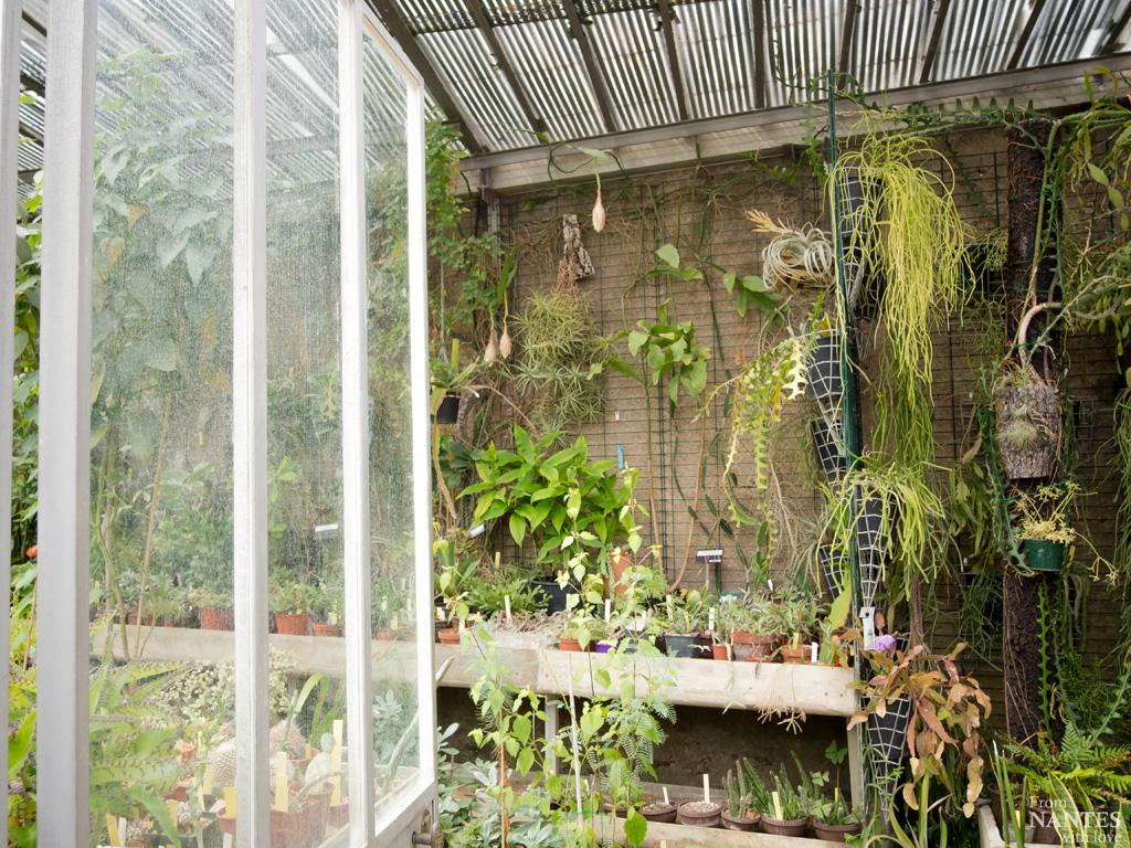d coration serre jardin des plantes 28 amiens serre jardin des plantes orleans serre. Black Bedroom Furniture Sets. Home Design Ideas