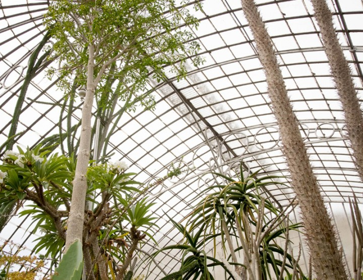 Pousser la porte des serres du Jardin des plantes de Nantes