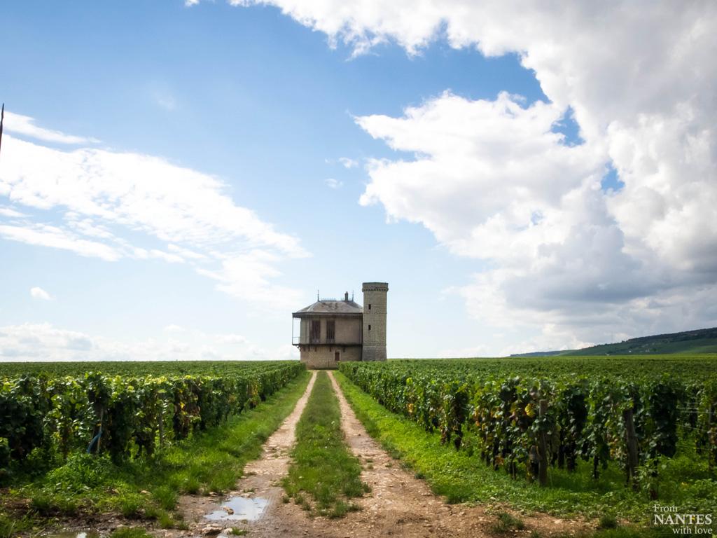 Route touristique des Grands Crus de BourgogneRoute touristique des Grands Crus de Bourgogne