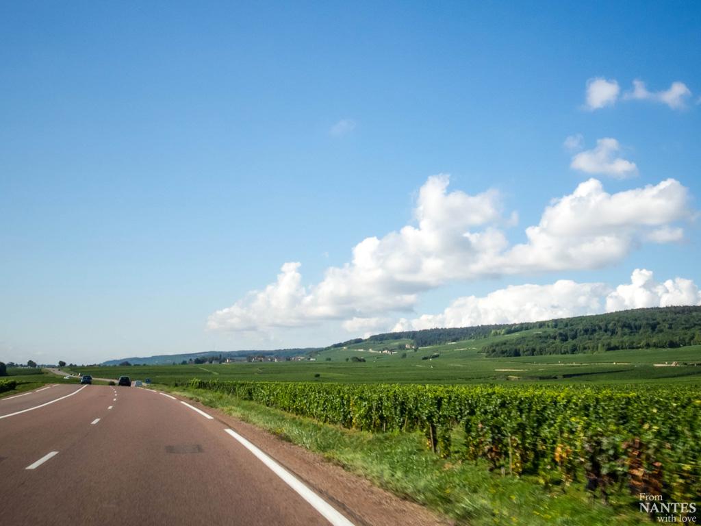 Route touristique des Grands Crus de Bourgogne