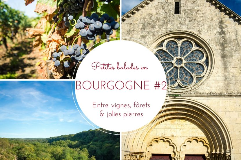 Petites balades en Bourgogne #2 : Entre vignes, forêts & jolies pierres