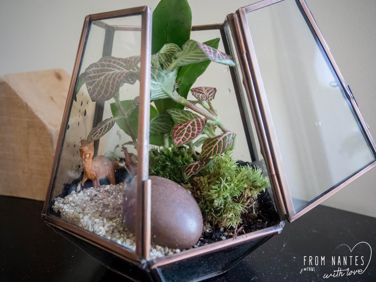 DIY_Kit-terrarium_Le-Coin-Jardin-17