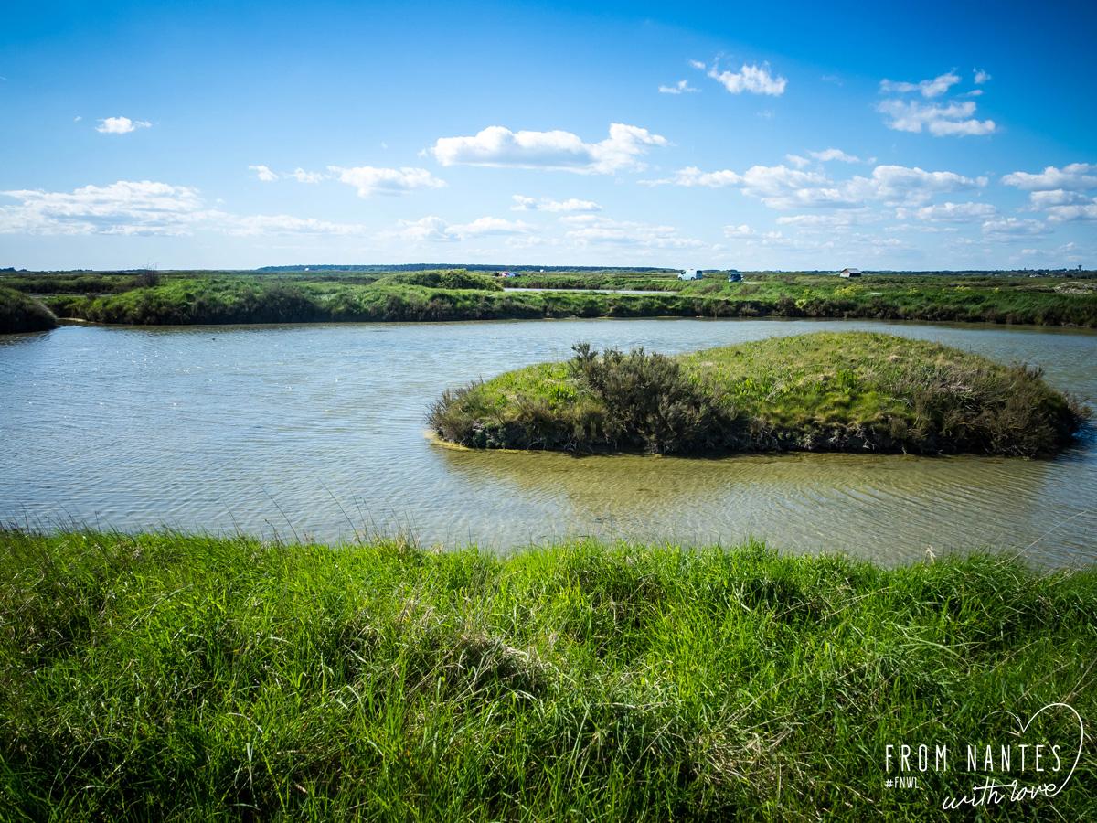 Se perdre dans les marais salants de Guérande