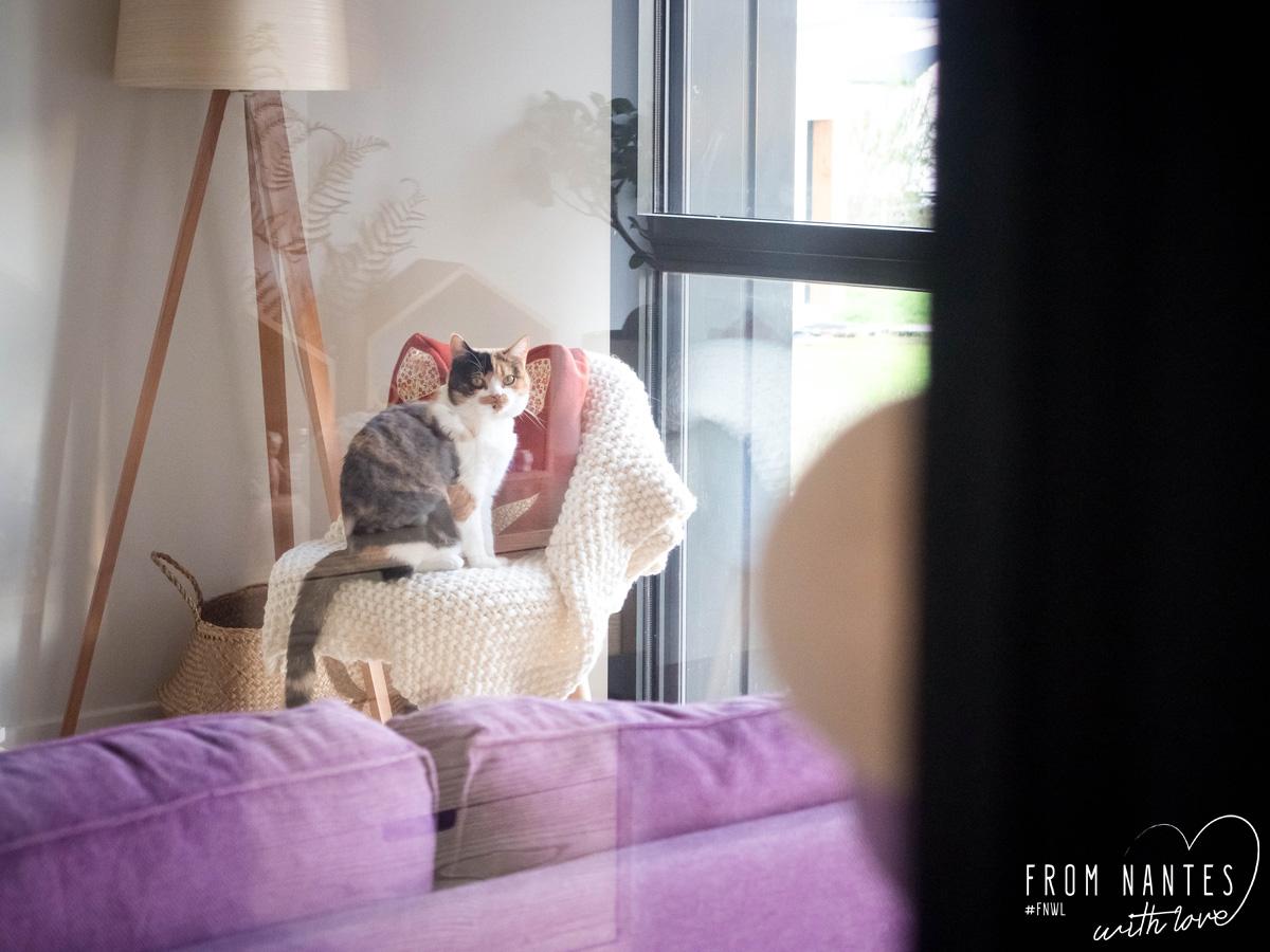 verriere interieure pas chere maison design. Black Bedroom Furniture Sets. Home Design Ideas