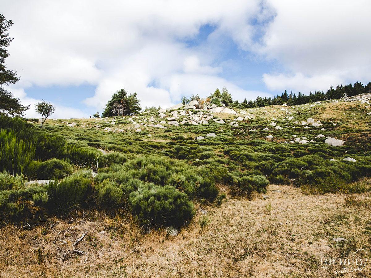 Chaos de Pierres du Mont Lozère