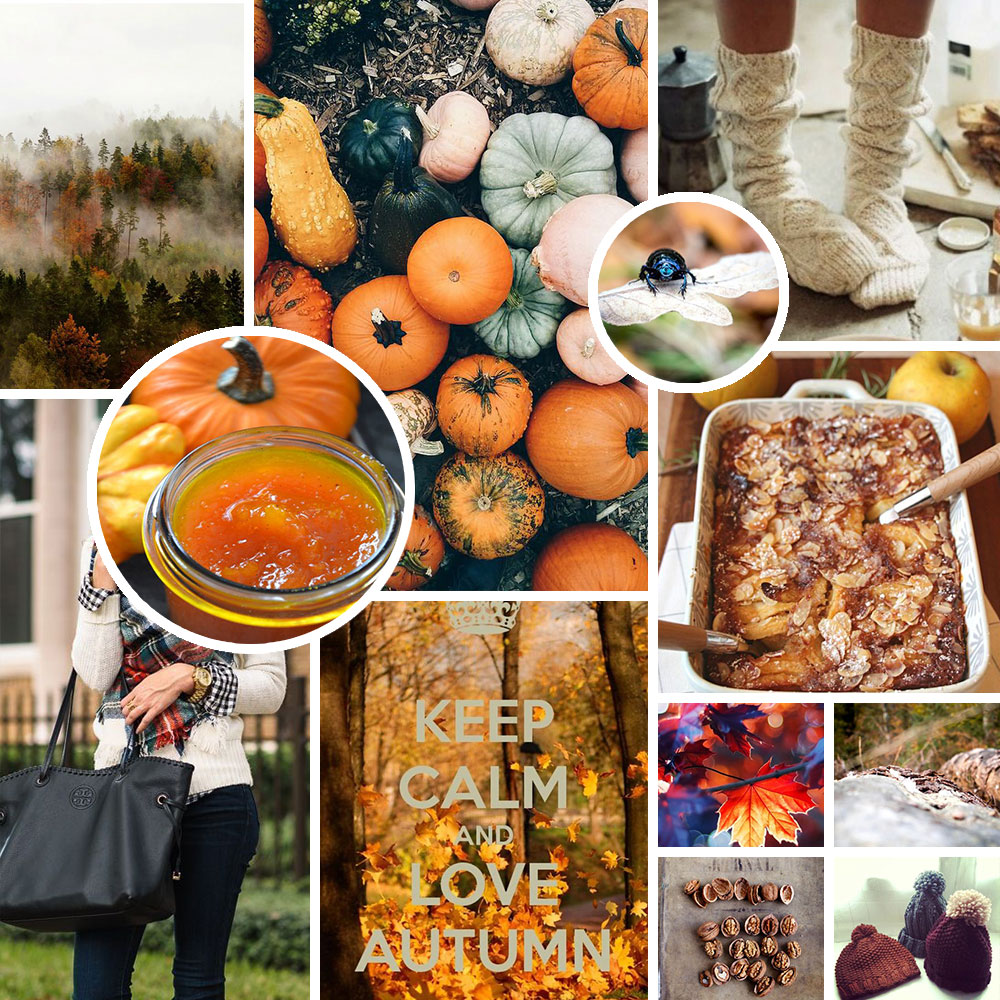 Moodboard d'automne