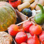 Qu'est-ce qu'on mange en octobre ?