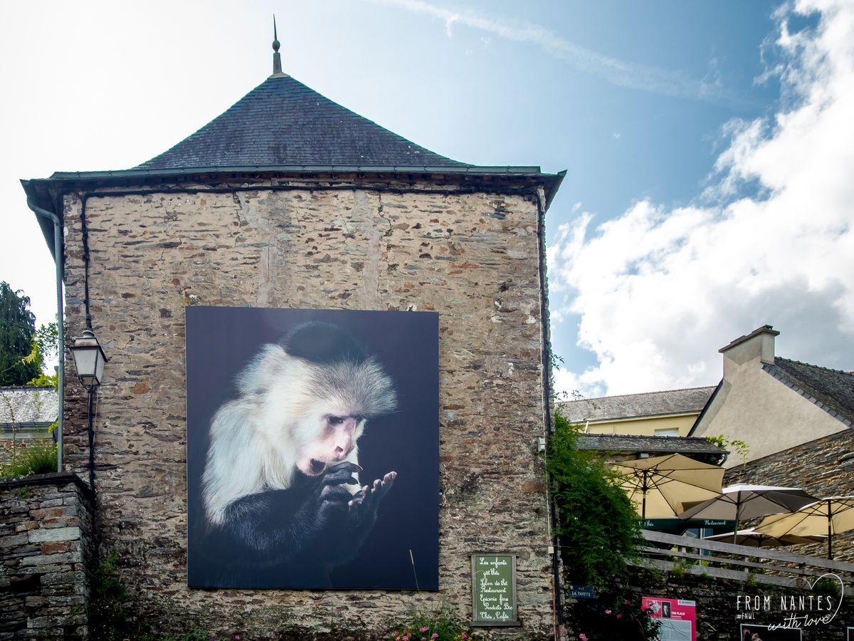 Festival Photo La Gacilly Bretagne