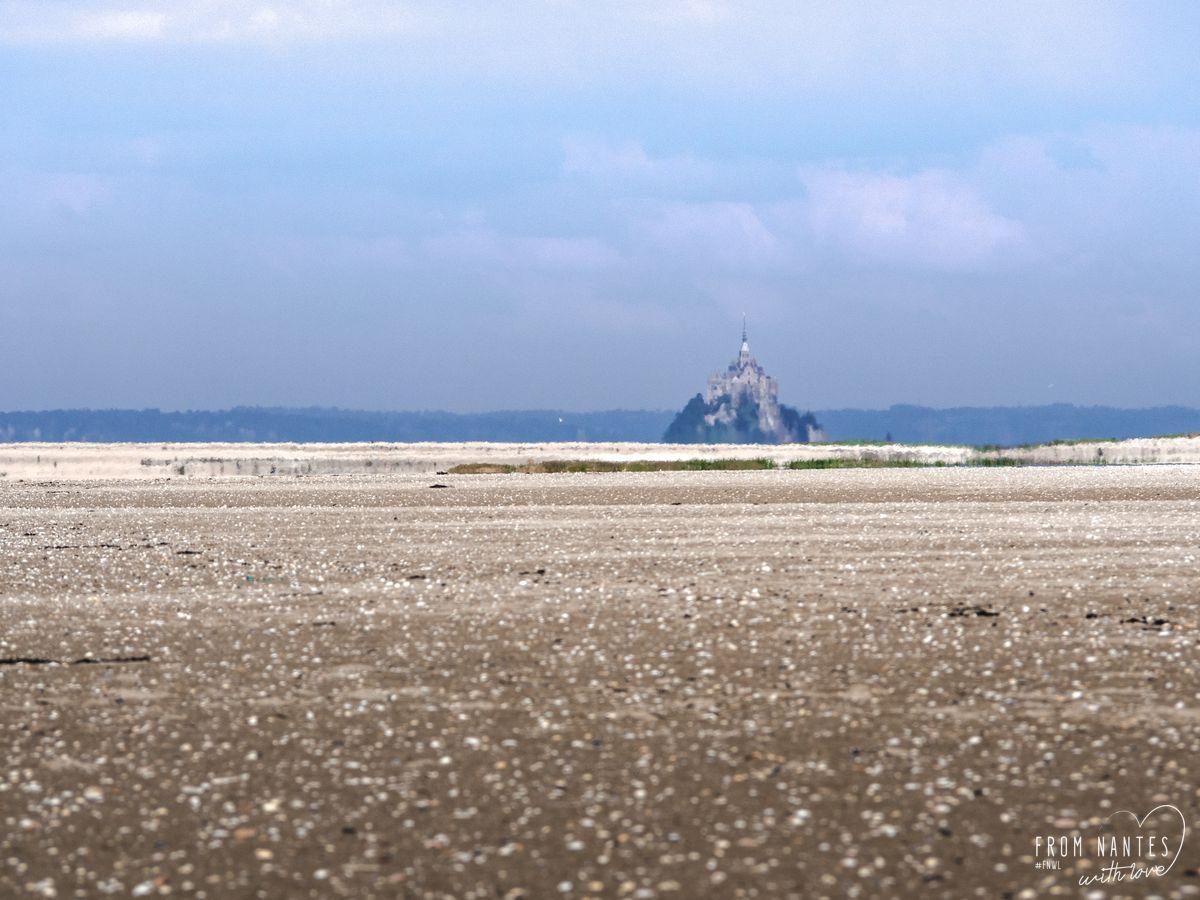 Polder Mont-Saint-Michel