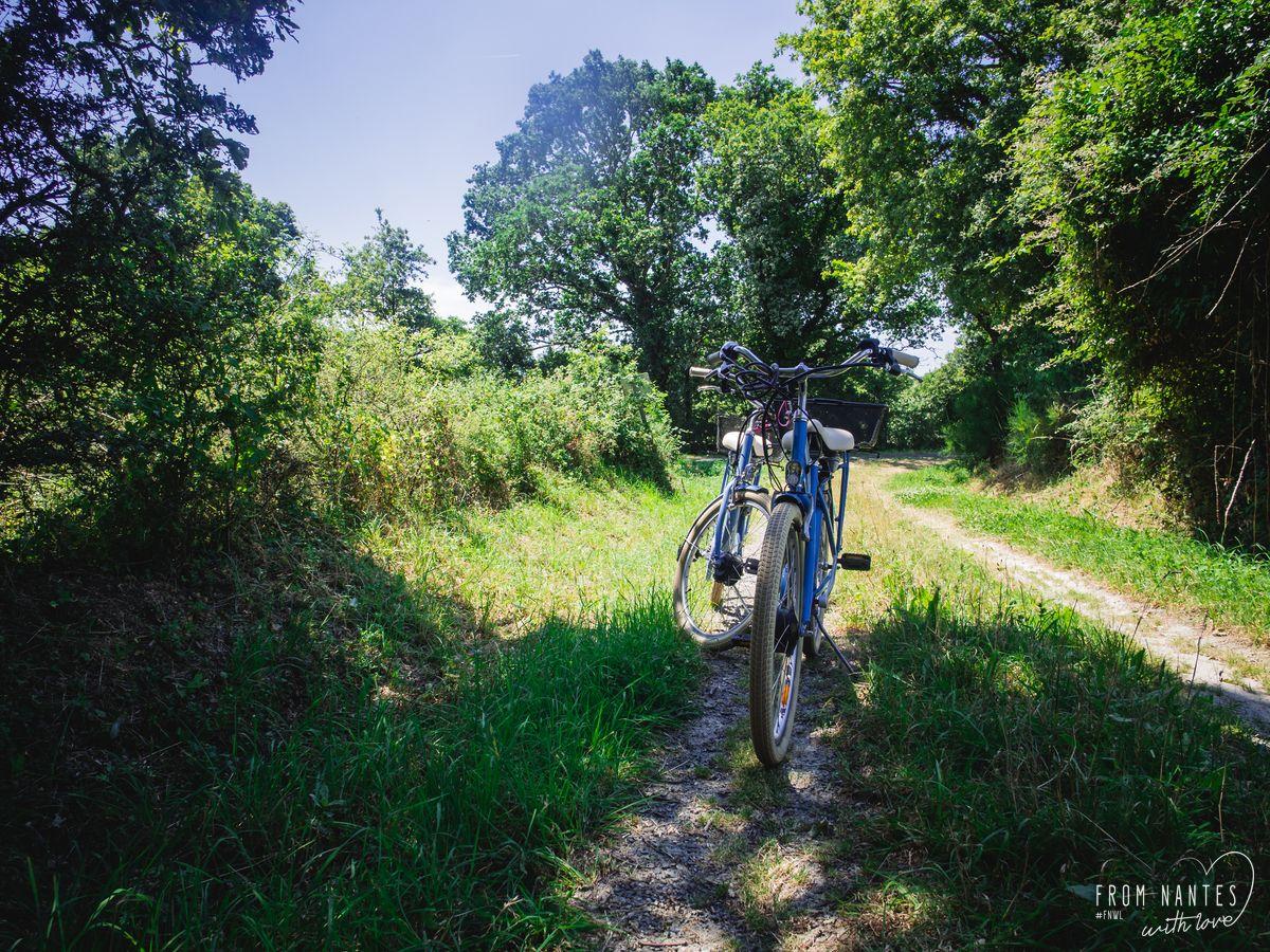 Vélo électrique côte Loire Atlantique