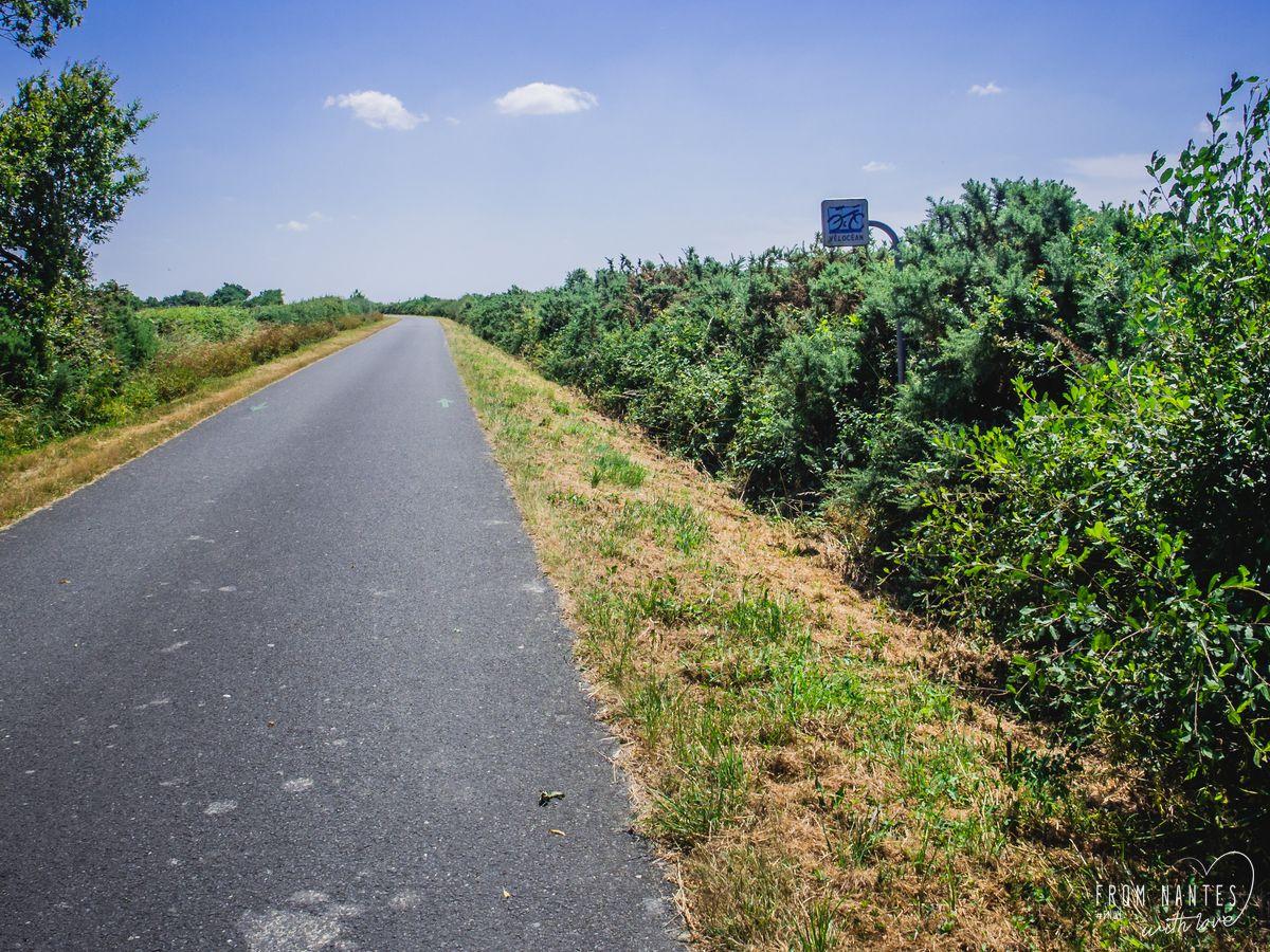 Seules au monde sur une piste cyclable grand luxe en Loire-Atlantique