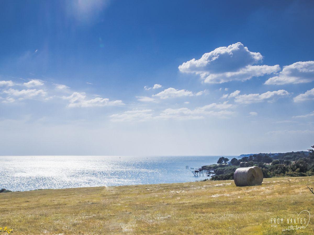 Paysage estival du bord de mer en Loire Atlantique