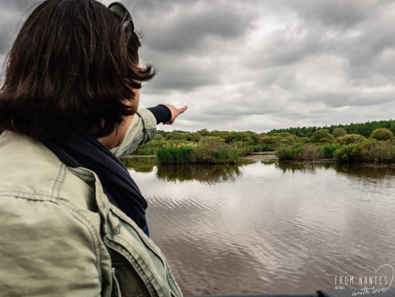 Promenade en Brière - Découverte de la faune et de la flore du marais en chaland